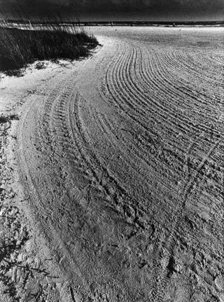 Sarasota Beach, Sand Pattern by Tiziano Micci