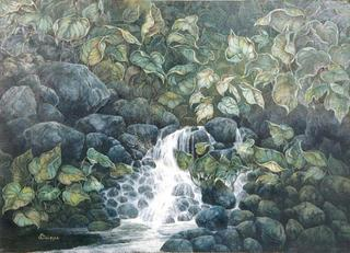 Hidden Spring by Carolyn S. Deines