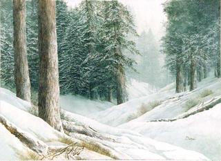 Endless Snow by Carolyn S. Deines