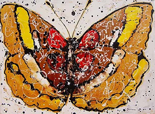 Butterfly 1 by Salvatore Tonnara