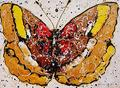 Butterfly 1 by Salvatore Tonnara