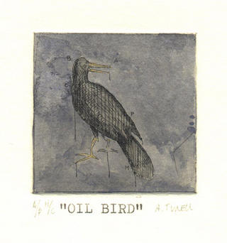 Oil Birds 01 by Alejandro Turell