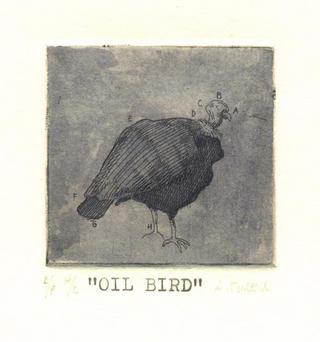 Oil Birds 03 by Alejandro Turell