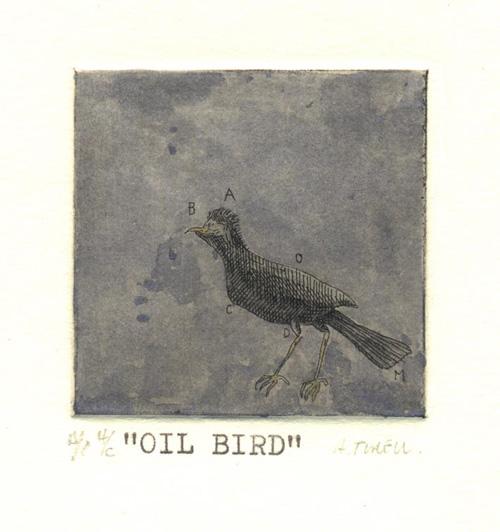 Oil Birds 04 by Alejandro Turell