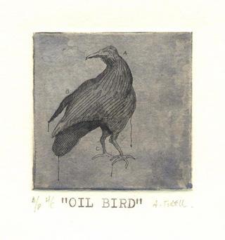 Oil Birds 05 by Alejandro Turell