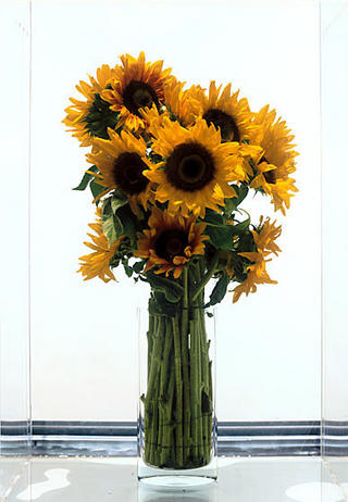 Frozen Sunflowers by Marc Quinn