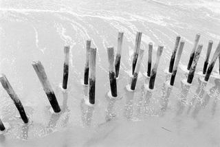 Intervened Landscape #03 by Sandra Marroig