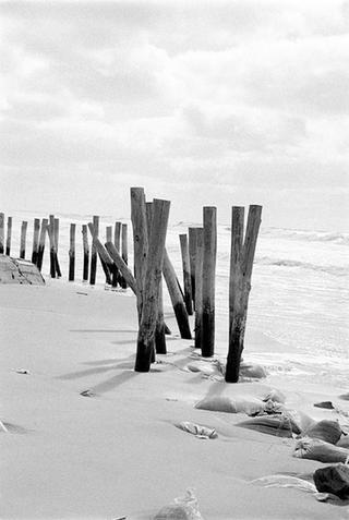 Intervened Landscape #04 by Sandra Marroig