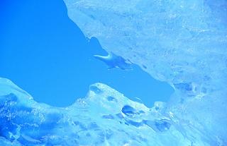 Melting Ice by Thomas Sbampato