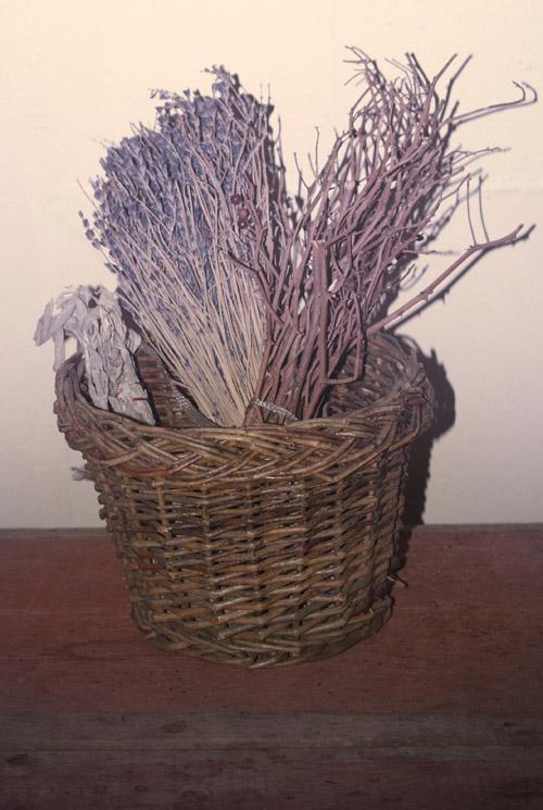 Basket by Gamini Kumara