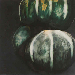 Squash from Portfolio of Fruits and Flowers by Donald Sultan