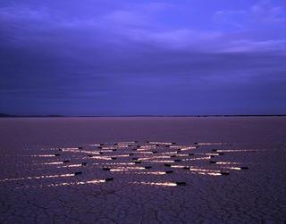 Glow-worms by Alfredo De Stéfano
