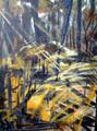 Trunks by Miguel Priego