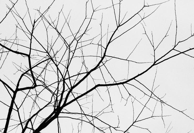 Untitled II by Kim Ji Hae