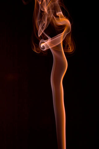 Long Legged Beauty by Paul Conroy