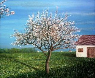 The Almond Tree by David Medina