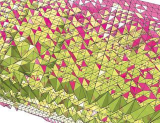 The Magic Carpet Ride - Carpet Garden by Kasia Ehrhardt