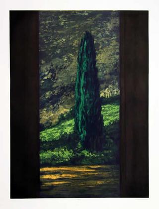 Cypress by Richard Ballard