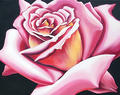 Pink Rose by Lowell Nesbitt