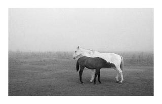 Intimacy by Nino Grangetto