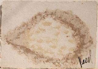 Quincuagenario by Leonardo Otálora
