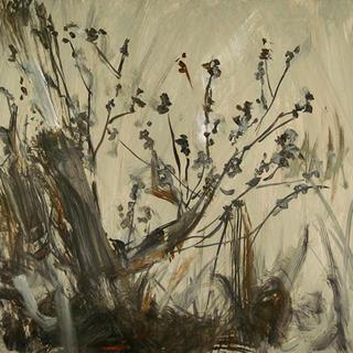 Nature 0014 by Oscar Astromujoff