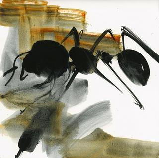 Territories Series:  Ant 30x30 4 by Oscar Astromujoff