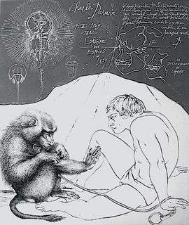 L'origine des espèces by Pierre Yves Tremois