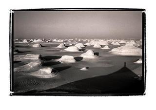 The White Desert by Joe Lasky