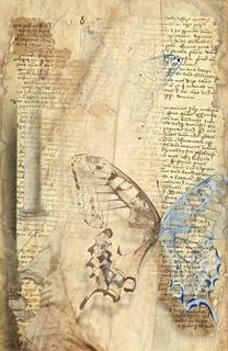 Palimpsest by Florin Mihai