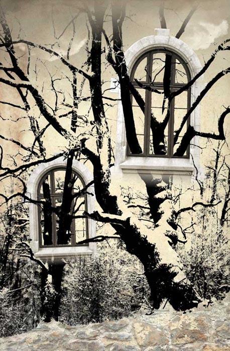 Hung Up by Florin Mihai
