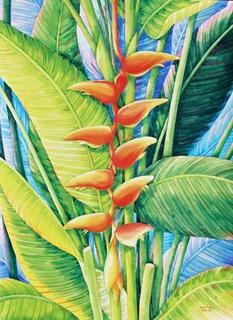 Heliconia 3 by Nantana Phonak