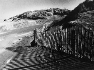 The fence from the Il vento s'innamorò della Sabbia Series - Fort Mahon - France by Tiziano Micci
