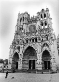 Amiens Cathedral by Tiziano Micci