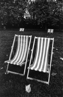 Green Park's Deckchairs - London by Tiziano Micci