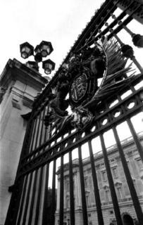 Buckingam Palace -London by Tiziano Micci