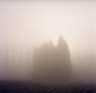 Landscape - Back Ibstone by Robert Davies