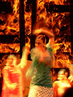 Flamenca Pasion by Daniel Bellido