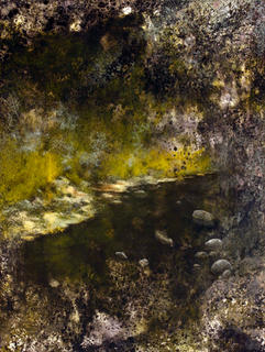 A Midsummer Night's Dream by Fermín Ramírez de Arellano