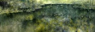 On Golden Pond (Diptych) by Fermín Ramírez de Arellano