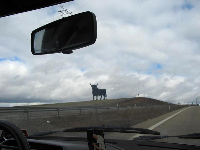 Bull by Rafael Gil