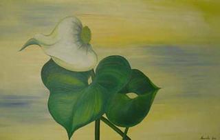 Calla Palustris by Marinella Owens