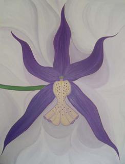 Miltassia Hybrids by Marinella Owens