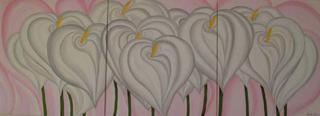 White Callas in Pink by Marinella Owens