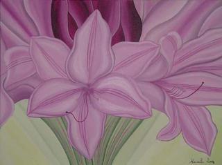 Pink Crinum Bulbispermum by Marinella Owens