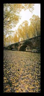 Vertical Roman Bridge by Jorge Polo