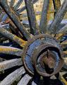 Wheel by Jorge Polo