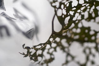 LDPE - Low Density Polyethylene by Birgit Muller