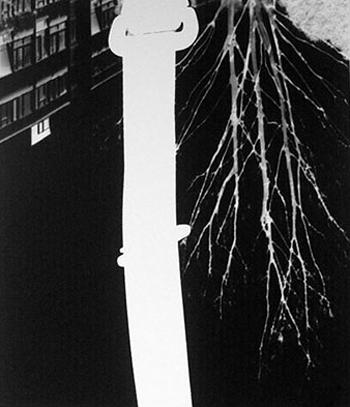 Car Pinhole Camera - Seatbelt by Helen Barff