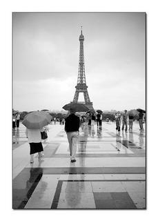 Eiffel Tower from Trocadero, París by Alberto Perez Veiga